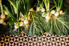 Vegetais no mercado Foto de Stock Royalty Free