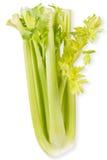 Vegetais orgânicos - aipo com folhas Isolado no fundo branco Foto de Stock