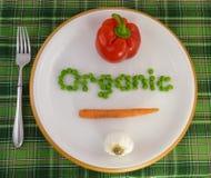 Vegetais orgânicos em uma placa Fotos de Stock Royalty Free