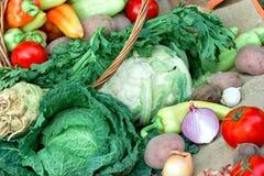 Vegetais orgânicos frescos Foto de Stock Royalty Free