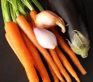 Vegetais orgânicos frescos do jardim imagem de stock