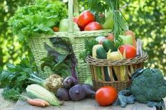 Vegetais orgânicos frescos na cesta de vime Imagem de Stock