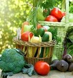 Vegetais orgânicos frescos na tabela Imagem de Stock Royalty Free