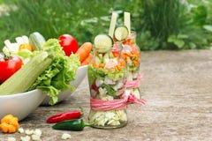 Vegetais orgânicos frescos no frasco - dieta saudável, antioxidantes fortes Fotografia de Stock Royalty Free