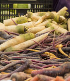 Vegetais orgânicos frescos - pilha de vegetais de raiz em um fazendeiro Fotografia de Stock