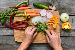 Vegetais para a salada Abóboras vegetais, pimenta, cebolas, salsa Fotos de Stock Royalty Free