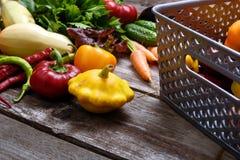 Vegetais para a salada Abóboras vegetais, pimenta, cebolas, salsa Imagens de Stock Royalty Free