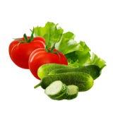 Vegetais para a salada Tomates, pepinos e verde no fundo branco Imagens de Stock