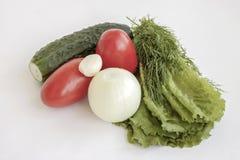 Vegetais para uma dieta Fotografia de Stock