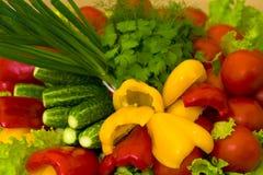 Vegetais preparados, cru Fotografia de Stock