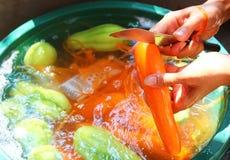 Vegetais processados Fotografia de Stock Royalty Free