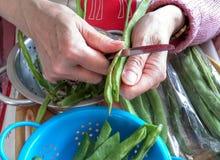Vegetais que estão sendo preparados Imagens de Stock