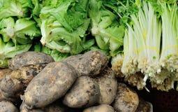 Vegetais que vendem no mercado Imagens de Stock