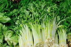 Vegetais que vendem no mercado Fotografia de Stock Royalty Free