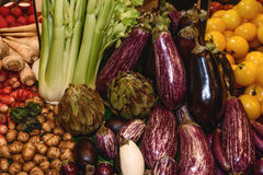 Vegetais, raizes comestíveis e tubérculos Rabanetes, beringela, tomates amarelos, alcachofras, erva-doce, raiz da salsa Foto de Stock Royalty Free