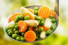 Vegetais recentemente colhidos cozinhados sortidos fotos de stock royalty free