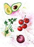 Vegetais salsa da aquarela, abacate, tomates cereja, cebola Fotos de Stock Royalty Free