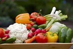 Vegetais saudáveis Fotografia de Stock Royalty Free