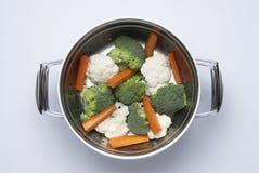 Vegetais saudáveis imagem de stock
