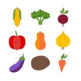 Vegetais sobre o branco Foto de Stock Royalty Free