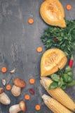 Vegetais sortidos e cogumelos Fotografia de Stock