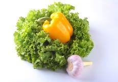 Vegetais sortidos frescos com alface de folha Isolado no fundo branco Foco seletivo Imagem de Stock