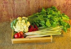 Vegetais sortidos na caixa de madeira em de madeira rústico escuro e no saco s Fotos de Stock