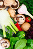 Vegetais tomate, pimenta, cogumelo, pepinos, Radic, erva-doce Foto de Stock