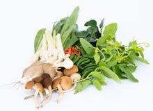 Vegetais tradicionais para o alimento em Tailândia Foto de Stock Royalty Free