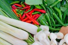 Vegetais tradicionais para o alimento em Tailândia Fotografia de Stock