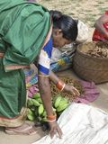 Vegetais tribais do sell das mulheres no mercado semanal imagem de stock