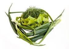 vegetais Verde fresco Fotografia de Stock Royalty Free