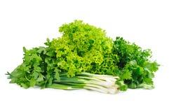 Vegetais verdes Imagem de Stock Royalty Free