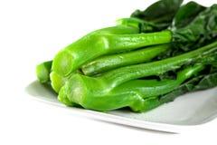 Vegetais verdes chineses frescos de Coocked Imagens de Stock