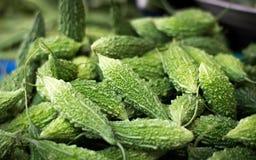 Vegetais verdes do charantia do momordica para vendas Imagem de Stock Royalty Free
