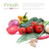 Vegetais verdes frescos no fundo branco fotografia de stock