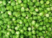 Vegetais verdes pequenos da couve-de-Bruxelas. Fotografia de Stock Royalty Free