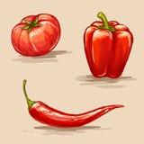 Vegetais vermelhos Fotografia de Stock Royalty Free