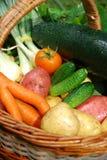 Vegetal Imagem de Stock