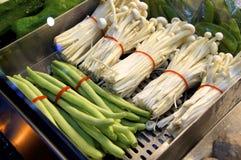 Vegetal Fotografia de Stock