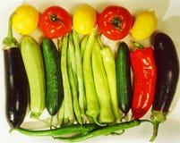 Vegetal Foto de Stock Royalty Free