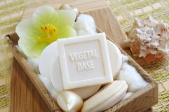Vegetal based natural soaps. Vegetal based natural organic soaps in a spa-salon or a beauty-shop, or in a bathroom Stock Image