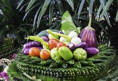 Vegetal bonito Fotografia de Stock Royalty Free