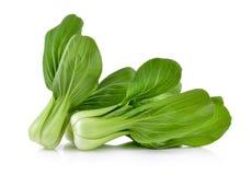 Vegetal choy de Bok no fundo branco Imagens de Stock