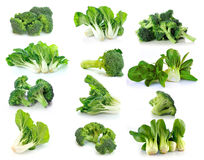 Vegetal choy dos brócolis e do Bok no fundo branco Fotos de Stock