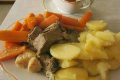 Vegetal cozinhado com carne Fotografia de Stock Royalty Free