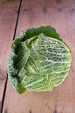 Vegetal da couve Imagem de Stock