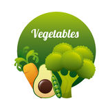 Vegetal design Royalty Free Stock Photography