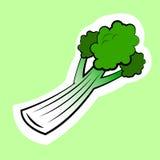 Vegetal do aipo isolado no fundo verde Foto de Stock