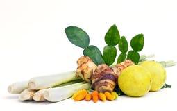 Vegetal do ingrediente Imagem de Stock